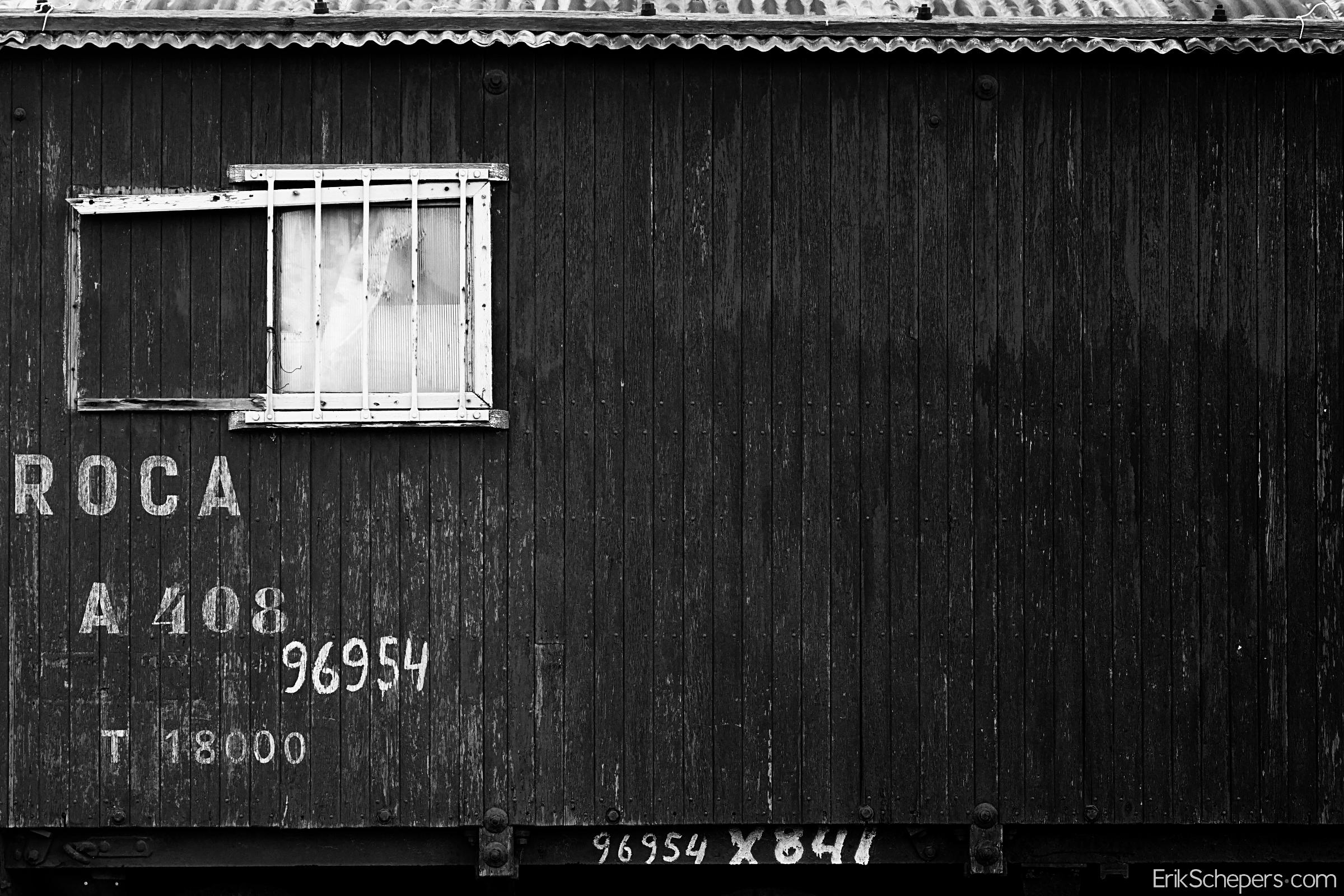 Tren Patagonico – Patagonia